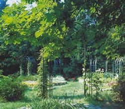 """Новейшие материалы и технологии для благоустройства дворов и парков были представлены на выставке """"Ландшафтная архитектура. Взгляд из дома""""."""